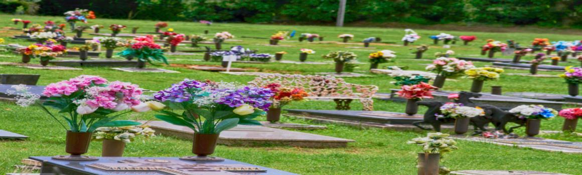 Suchville Memorial Lotes